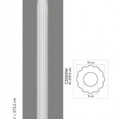 COLONNE C3000 2W